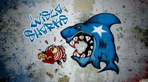 Graffiti des fans du Wisla