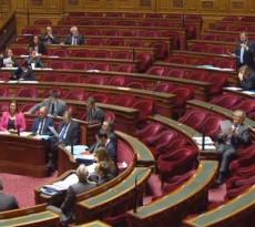 senat2